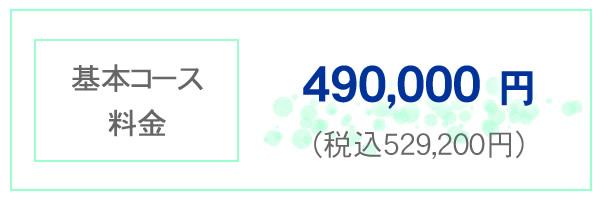 基本コース料金 490,000円 税込み529,200円