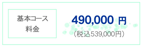 基本コース料金 490,000円 税込み539,000円