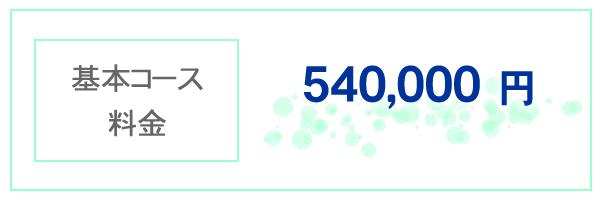 基本コース料金 540,000円