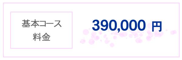 基本コース料金 390,000円